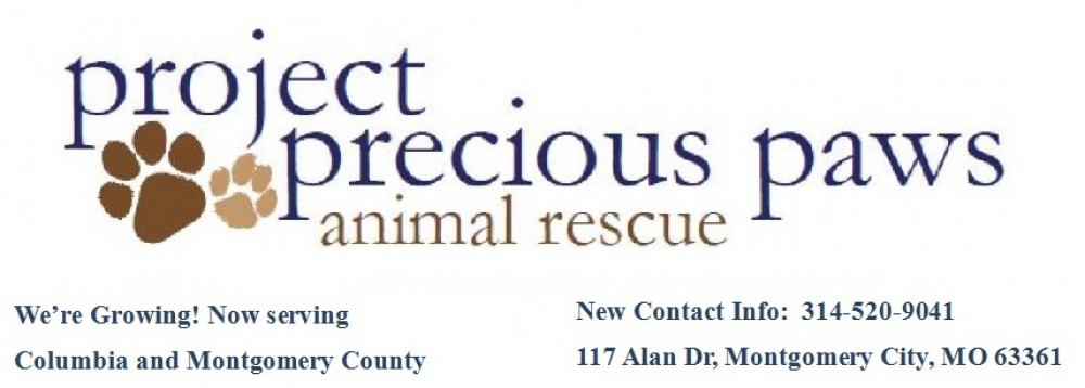 Project Precious Paws